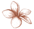icon_flower